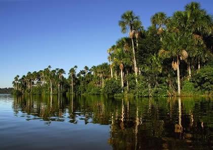 rio heath tambopata reserva