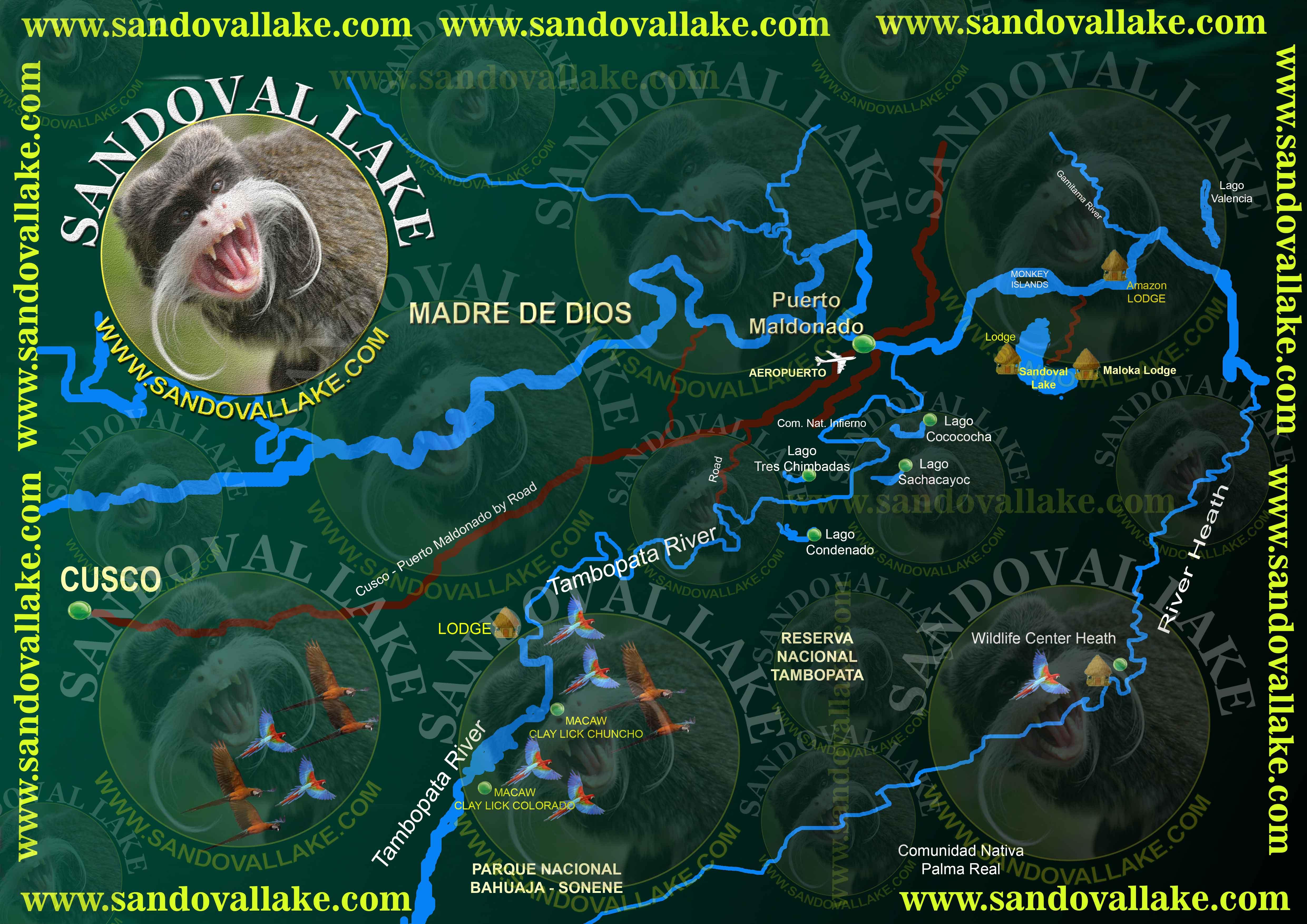 sandoval lake lodge amazon peru, sandoval lake reserve, lake sandoval lodge, tambopata sandoval lake lodge