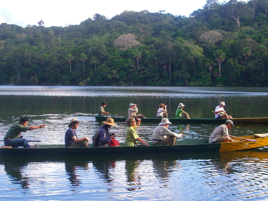 sandoval lake ,amazon peru ,wild nature ,wildlife amazon
