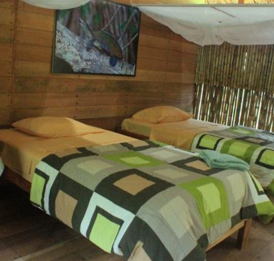 lodge tambopata inn sandoval lake lodge reserve peru