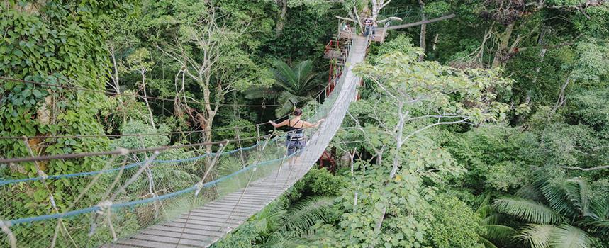 sandoval lake lodge - amazon wildlife - amazon peru