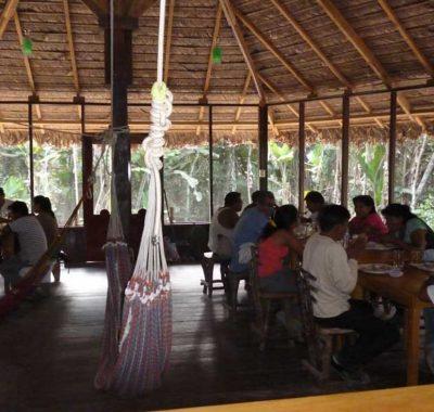 sandoval lake lodge - Maloka Lodge Sandoval Reserve in Peru