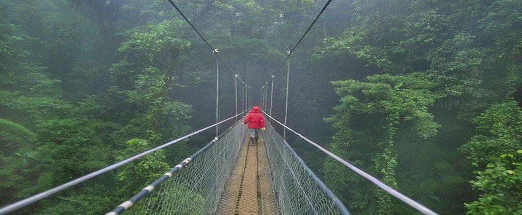 Amazon Lodge Adventure Tour