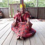 comunidad nativa palma real tambopata tours 37