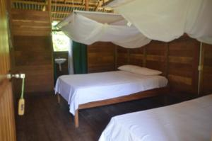 Tours tambopata Lodge Inn - Peru Amazon - Tambopata Reserve Center Macaw Clay Lick Chuncho