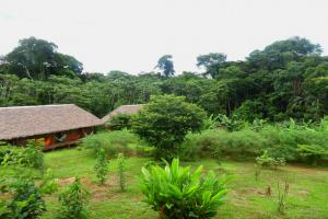 Tambopata Research Center  lodge inn 35