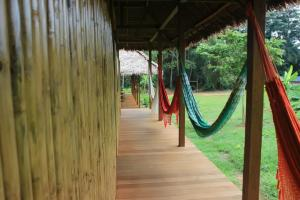 Tambopata Research Center  lodge inn 36
