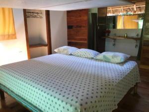 Tours tambopata Lodge Inn - Peru Amazon - Tambopata Reserve Center Macaw Clay Lick Chuncho