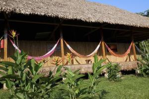 Tambopata Research Center  lodge inn 20