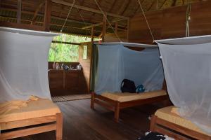 Tambopata Research Center  lodge inn 42